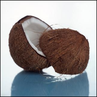 Coconuts-324x324